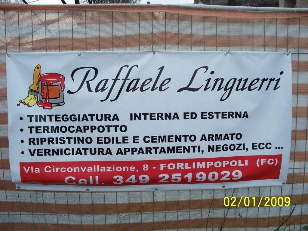 Banner 2x1 Linguerri